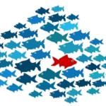 Fish-Graphic
